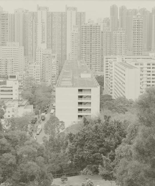 筆架山花園的家庭主婦,告別九龍半島層層叠叠的住屋文明。