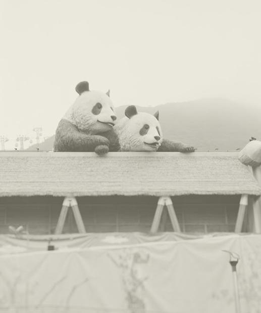 海洋公園的小學生,送別地球最後的主人。